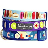 Blueberry Pet The Ultimate Macaroon Cake With Spring Pastel Hues Basic Dog Collar, Neck 45cm-66cm, Large, Collars for Dogs, Matching Lead Available Separately