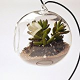 Hanging Glass Plant Flower Vase Bauble Tea Light Candle Holder Clear Dia.10cm