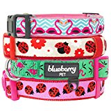 Blueberry Pet Pink Flamingo on Light Emerald Basic Dog Collar, Neck 30cm-40cm, Small, Collars for Dogs, Matching Lead & Harness Available Separately