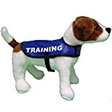 Warning TRAINING BLUE Safety GDC Waterproof Lightweight Dog Coat Jacket Anorak (SMALL)