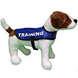 Warning TRAINING BLUE Safety GDC Waterproof Lightweight Dog Coat Jacket Anorak (SMALL)
