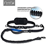 PetPäl Premium elastic reflective Jogging-leash 120 cm long made of solid Nylon for Dogs up to 62 kg High-quality adjustable neoprene hip belt 60 120cm Ideal for Jog,Hiking & Take a walk Enjoy - Blue
