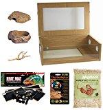Corn Snake Starter Kit - Medium Vivarium (24
