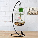 Hanging Glass Flower Vase Bottle Hydroponic Terrarium Container Home Decor - L