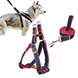 Pet Harness,Ambielly Jean Dog leads No-Pull Dog/Cat Leash with Quick Release Buckles Dog Safety Harness Cowboy Strap Rope Chain (M, Red)