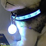 ELENXS Pet Supplies Night Safety Led Spotlit Dog Led Glow Tags Clip On Glow In The Dark Light