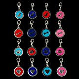 Rosba(TM) (16pcs/lot) 25mm Diameter Mixed 4 Colors& 4 Patterns Pendants Charms For Personalized Dog Collars