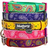Blueberry Pet Soft & Comfortable Paisley Flower Print Inspired Ultimate Emerald Green Adjustable Neoprene Padded Dog Collar, Neck 37cm-50cm, Medium, Collars for Dogs, Matching Lead & Harness Available Separately