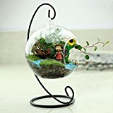 Pggpo Clear Round Glass Vase Hanging Bottle Terrarium Container Plant Flower Home Table Wedding Garden Decor With Holder