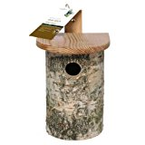 Chapelwood Wild Bird Silver Birch Nest Box