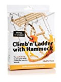 Sharples N Grant Climb-n-Ladder with Hammock