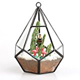 Modern Artistic Clear Hanging Air Planter Tear Diamond Glass Geometric Terrarium Small 11cm x 11cm x 13.5cm Clear Framed for Succulents Cacti Fern