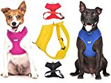 Dexil Elite Range Luxury Padded Waterproof Adjustable Back and Front Ring Non-Pull Large Pet Dog Vest Harness (Sunburst Yellow, Large 55-80cm Chest)