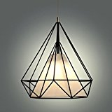 Sanyi 28CM Modern Industrial Bird Cage Chandelier Pendant Light Iron Cage Fixture Lamp Without Bulbs
