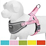Blueberry Pet Soft & Comfortable 3M Reflective Strips Harness Vest, Chest Girth 53cm-60cm, Medium, Nylon Solid Color Pink Neoprene Padded Anti/No-pull Adjustable Training Dog Harness