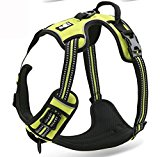 Front Range Dog Harness Harness, No-Pull. 3M Reflective Stitching for Improved Night-Time Visibility - Green, Large Size