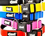 LIFETIME GUARANTEE Dexil Elite Range Luxury Neoprene Padded Extra Strong Adjustable Large-XXL Pet Dog Collar (Sunburst Yellow, Large-XL 38-64cm x 30mm)