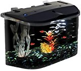 API Panaview Aquarium Kit with LED Lighting and Power Filter, 5-Gallon by KollerCraft