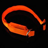 SODIAL(R) Night LED Plain Flashing Illuminous Adjustable Safety Dog Cat Pet Collar Tag - Orange