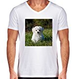 V-Neck White T-Shirt for Men - Medium Size - Cute White Animal Dog by WonderfulDreamPicture