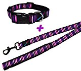 H&B Princess Stripe Dog Collar & Lead Set, Choose Size, (Medium Collar & Lead)