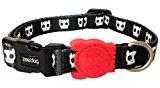 Skull Dog Collar with Dog Skull Motif, Choose Size, (Small Collar)