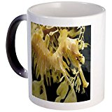 CafePress - Leafy Seadragon - Unique Coffee Mug, 11oz Coffee Cup, Tea Cup