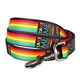 Blueberry Pet Durable Rainbow Stripes Designer Dog Lead 120 cm x 2.5cm, Large, Leads for Dogs, Matching Collar Available Separately