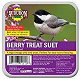 GLOBAL HARVEST FOODS LTD - Wild Bird Suet, Berry, 11.75-oz.