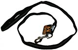 216-NL-2S Julius K9® IDC luminous dog lead / leash to walk to train the dog with loop / size: 19 mm x 2 m