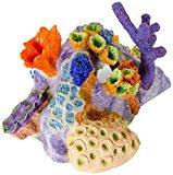 BioBubble Origins Pacific Reef Ornament, Large, Multicolor