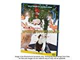 Small Animal Advent Calendar - Single