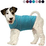 Vivaglory Anxiety Shirt with Stress Relief and Anti-Anxiety Effect for Dogs, Light Blue, S