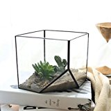 Glass Cube Terrarium Planter Fairy Garden Greenhouse 15 x 9cm