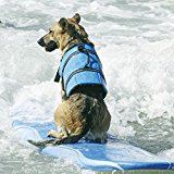 Dog Life Jacket Size Adjustable Safety Pet Life Vest Blue Safety Preserver Hound Swim Floation for Protect Pet MaiTian