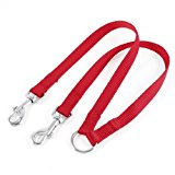 Red Nylon 15mm Width Walk Double Dog Two Lobster Clasp Way Pet Leash