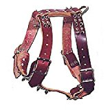 Leather Brothers 177KS-BK One-Ply Latigo Dog Harness with Spikes and Studs, Large, Black