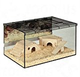 Spacious Small Pet Terrarium - W/ Glass Walls And Mesh Roof W/ Ventilation - Perfect For Small Animals Which Like To Burrow, Such As Hamsters