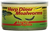 Lucky Reptile HDC-32 Herp Diner Meal Worms with Calcium