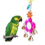 Bird Mirror Toy for Parrot Macaw African Greys Budgies Parakeet Cockatiels Cockatoo Conure Lovebird Cage Bells Toy