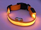 Lesypet LED Light Flashing Dog Puppy Pet Safety Collar Nylon Adjustable Width 1 inch