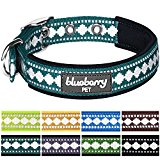 Blueberry Pet Soft & Comfortable 3M Reflective Neoprene Padded Dog Collar in Teal Blue with Jacquard Pattern, Neck 33cm-42cm, Medium, Collars for Dogs, Matching Lead Available Separately