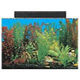 SeaClear Rectangular Aquarium Combo (Clear)