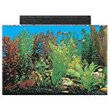 SeaClear Rectangular Aquarium Combo (Clear)