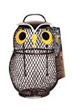 Chapelwood Little Owl Fun Bird Feeder