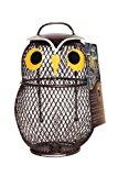 Chapelwood Little Owl Fun Bird Feeder