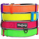 Blueberry Pet Soft & Comfortable New Summer Hope 3M Refelctive Fluorescent Pink Padded Collar, Neck 45cm-66cm, Large, Collars for Dogs, Matching Harness Available Separately
