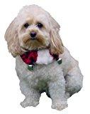 Kyjen Christmas Dog Collar, Medium, Red/White
