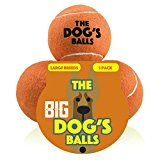 The Big Dog's Balls, 3 Large Orange Tennis Balls, Premium, Strong Dog Toy Ball for Dog Fetch & Play. Large Dogs Balls, Too Big for Chuckit Launchers, the King Kong of Dog Balls