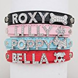 Personalised Dog Puppy Cat Pet NAME Collar(Red,XS)
